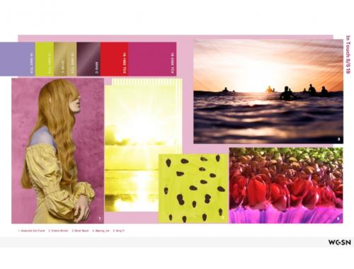 macro tendencias 2019 wgsn creative manifesto common ground in touch